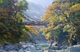 Pilgrimage Tour  In Shikoku Packages