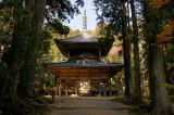 Trekking Tour Along Mount Koya And Temples Packages